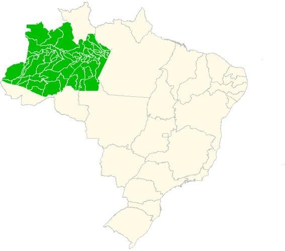 Municípios do estado do Amazonas